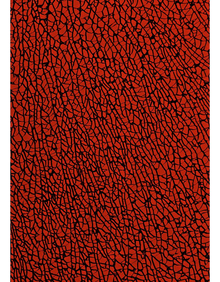 infrarouge_07
