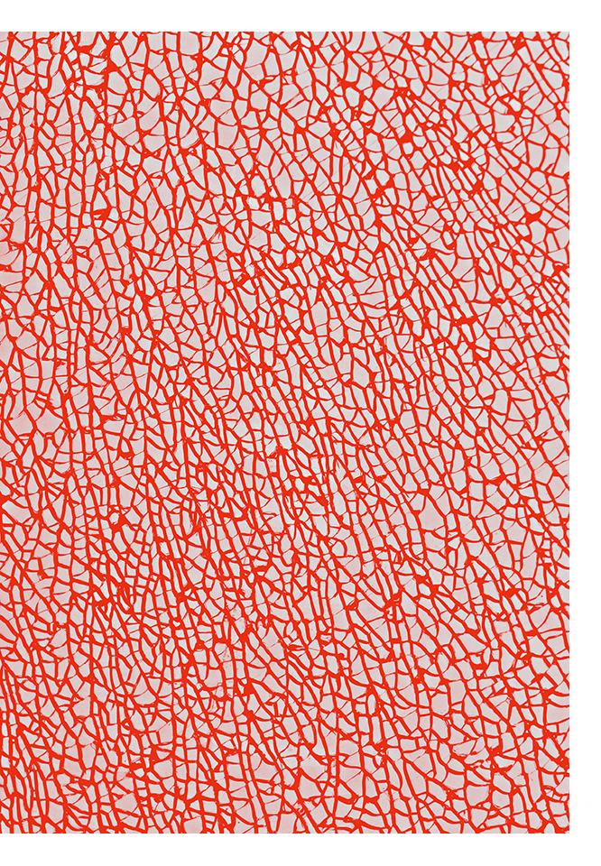 infrarouge_08