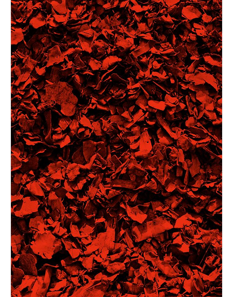 infrarouge_09