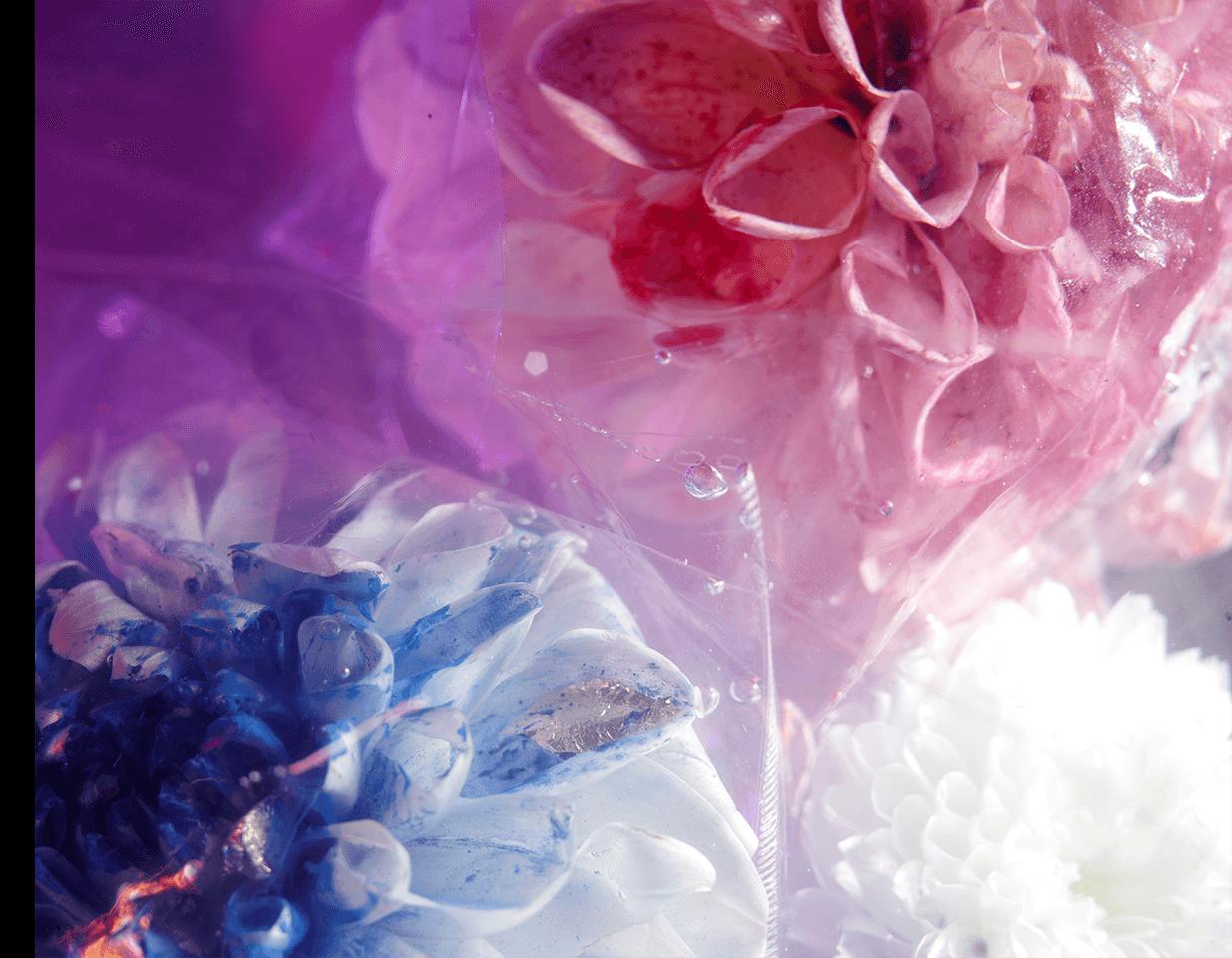fleurs_du_mal_02
