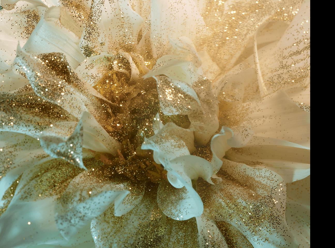 fleurs_du_mal_04